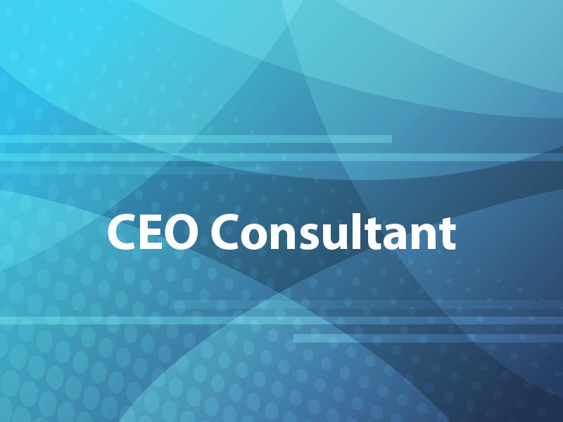 CEO Consultant